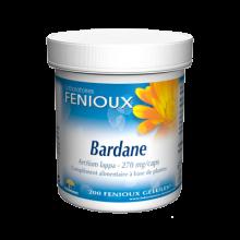 FENOUIX Bardane Arctium lappa